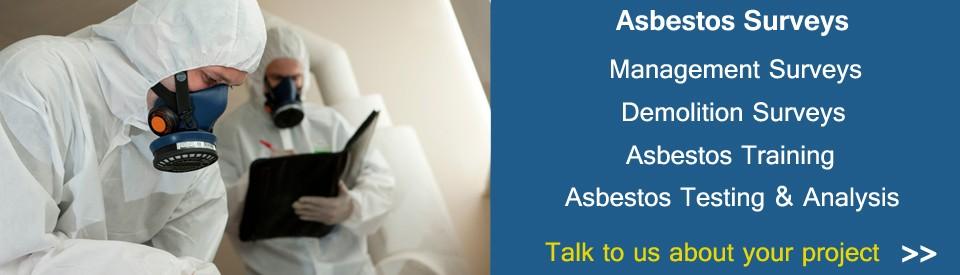 asbestos-solutions-ni-bann2